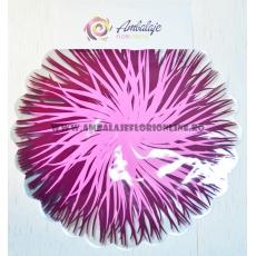 Il cellophan rotondo fiammeggia granato con il rosa