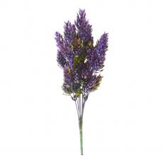 Bouquet di luppolo verde con viola