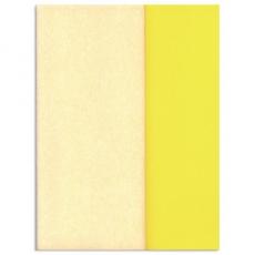 Carta crespa Gloria Doublette bianco-bianco giallo, codice 3303