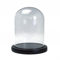Tipo di coppa in vetro Cupola supporto legno 15x12
