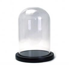 Tipo di coppa in vetro Cupola supporto legno 17x12