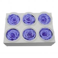 Set di 6 rose criogeniche - lilla