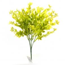 Profumo Rubus verde giallo