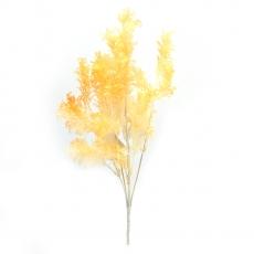 Bouquet di piante di aneto arancione