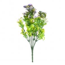 Kalanchoe verde con viola
